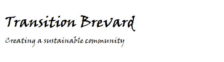 Transition Brevard